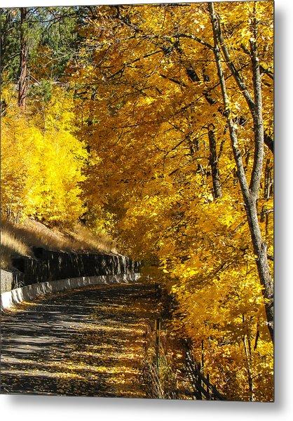 Golden Road Metal Print by Curtis Stein