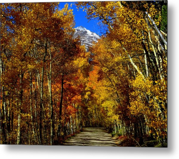 Golden Tunnel Metal Print