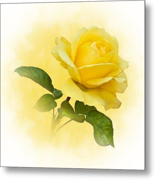 Golden Yellow Rose Metal Print
