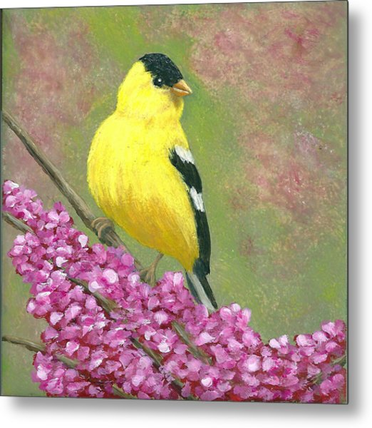 Goldfinch Spring Metal Print