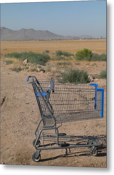 Gone Shopping Metal Print by Sanda Kateley