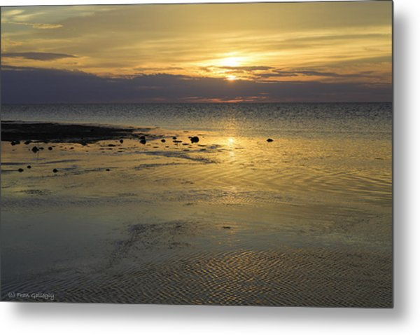 Good Morning Florida Keys V Metal Print