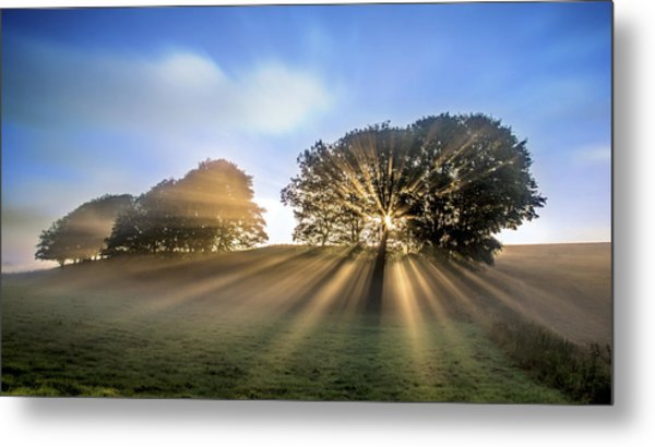 Good Morning To A Great Day. Metal Print