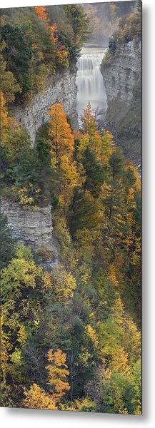Gorge In Autumn Light Metal Print