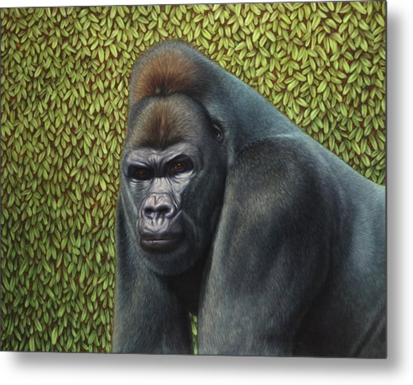 Gorilla With A Hedge Metal Print