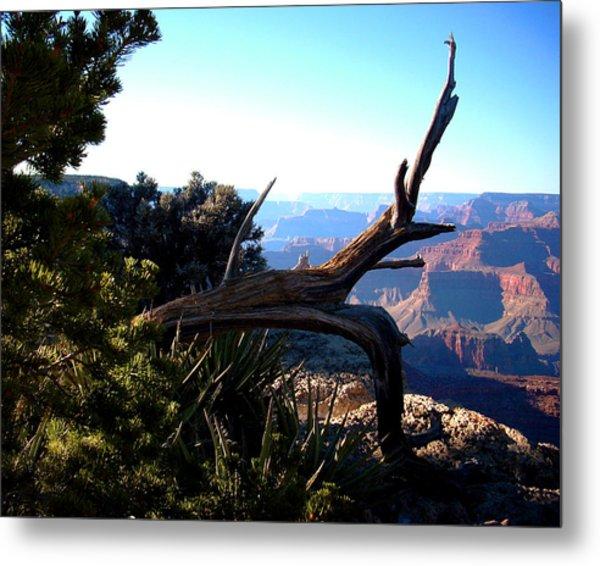 Grand Canyon Dead Tree Metal Print