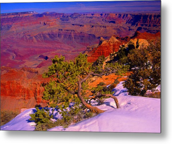 Grand Canyon In Winter Metal Print