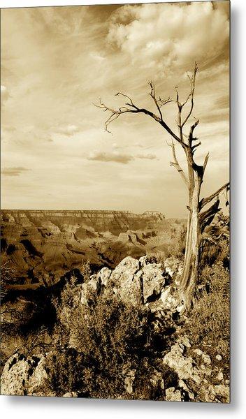 Grand Canyon Sepia Metal Print by T C Brown