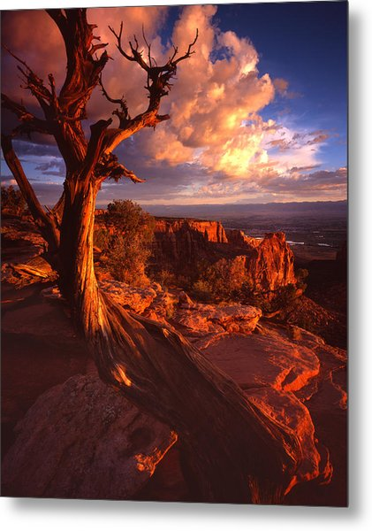 Grand View Point Sunrise Metal Print