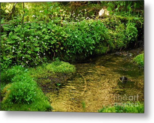Granite Creek Metal Print