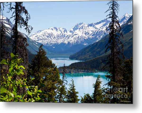 Grant Lake Overlook Metal Print by Chris Heitstuman