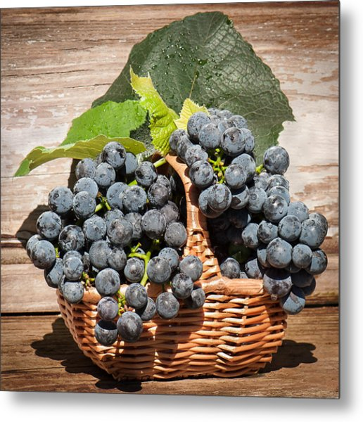 Grapes And Leaves In Basket Metal Print