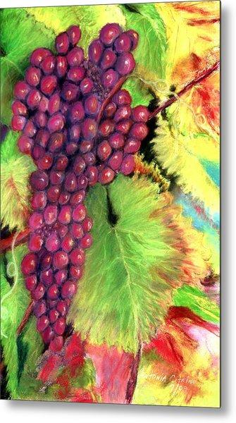 Grapes On Vine Pastel Metal Print