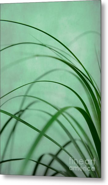 Grass Impression Metal Print