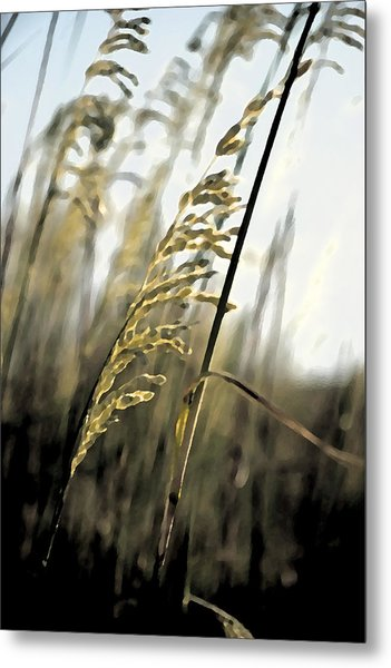 Grass In The Wind Pla 377 Metal Print