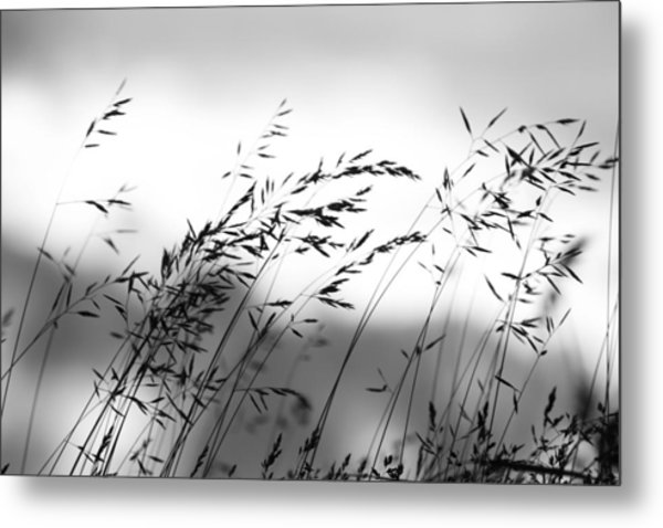 Grass On Mount Iwaki Metal Print