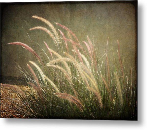 Grasses In Beauty Metal Print