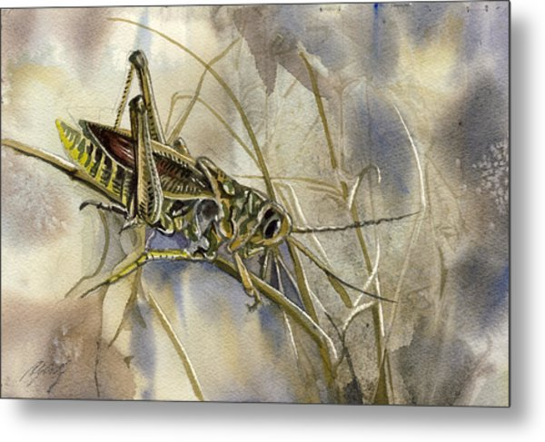 Grasshopper Watercolor Metal Print