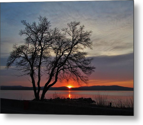 Grassy Point Sunrise Metal Print by Thomas  McGuire