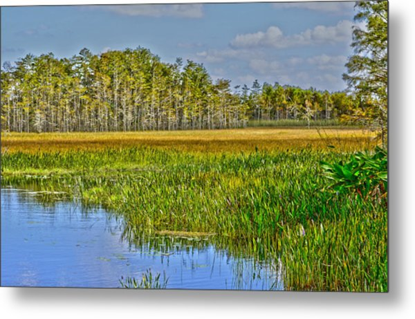 Grassy Waters Metal Print