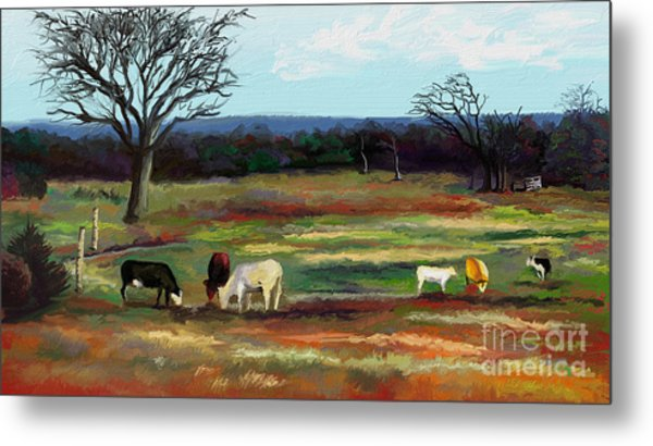 Grazing In The Pasture Metal Print by Sandra Aguirre