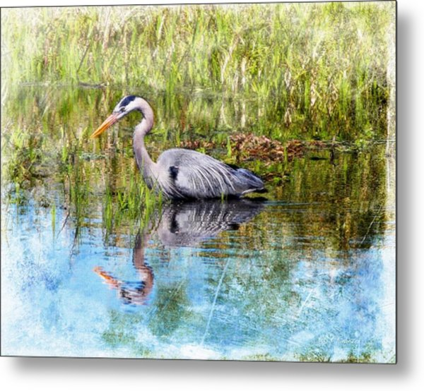 Great Blue Hunter Metal Print