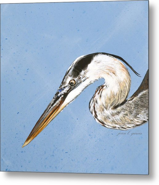 Great Blue Tyler Metal Print