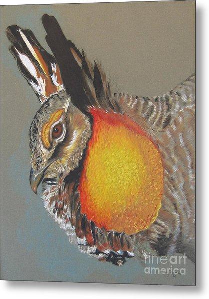 Greater Prarie Chicken Metal Print