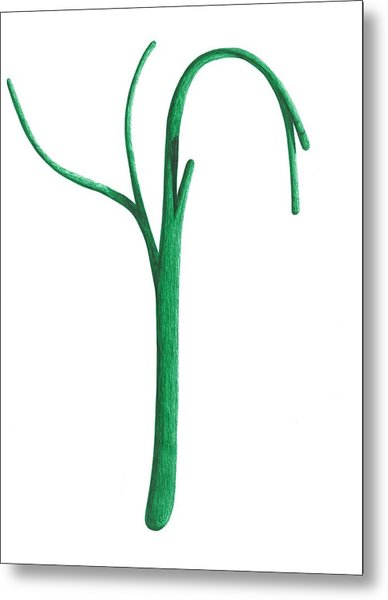 Green Branche Metal Print