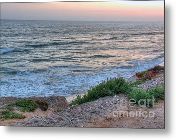 Green Dog Beach Coastline Metal Print by Deborah Smolinske