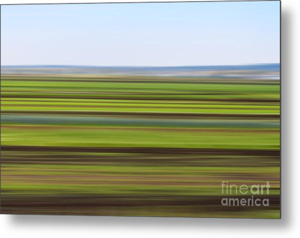 Green Field Abstract Metal Print