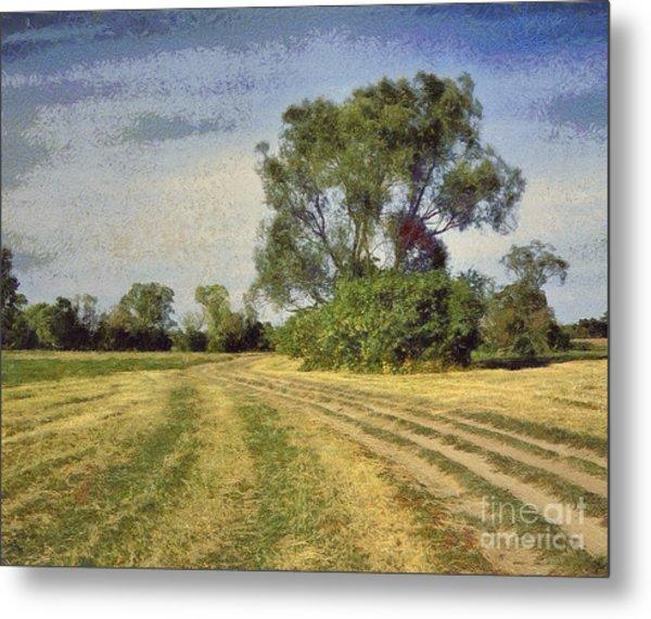 Green Landscape  Metal Print