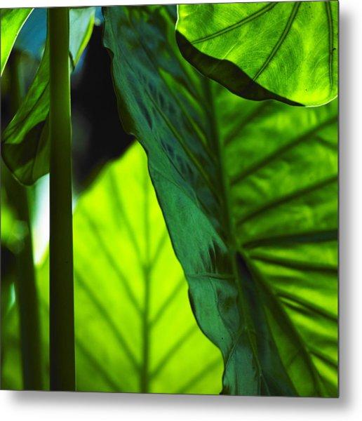 Green Leaf Trilogy I Metal Print