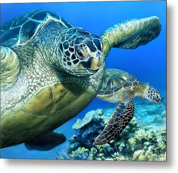 Green Sea Turtle Metal Print by Owen Bell