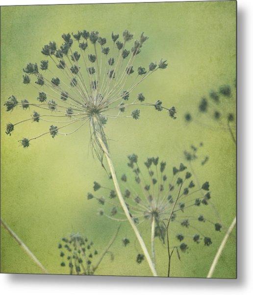 Green Seeds Metal Print by Rani Meenagh