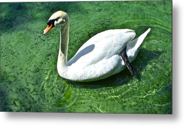 Green Swan Metal Print
