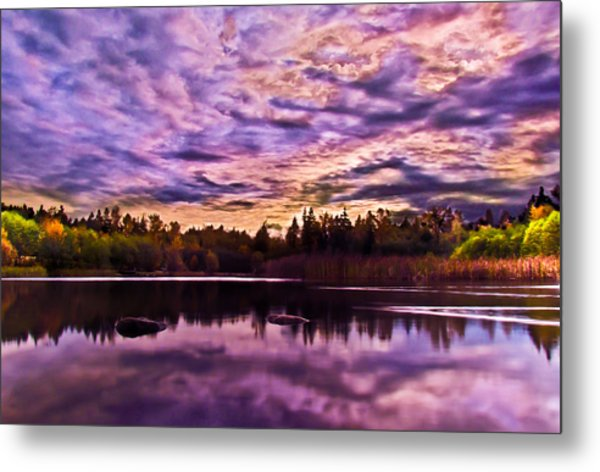 Green Timbers Park At Sunset Metal Print