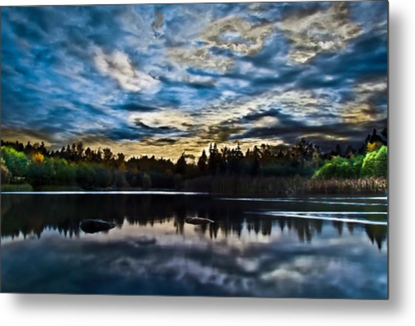 Green Timbers Park With Blue Sunset Metal Print