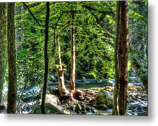 Greenbriar Landscape Metal Print by Barry Jones