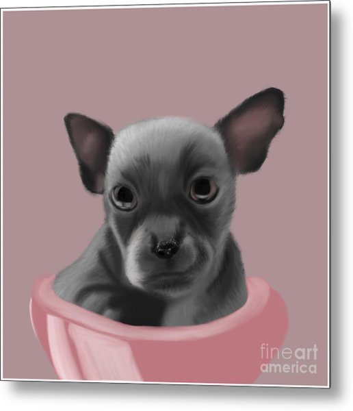Grey Chihuahua In The Pink Metal Print