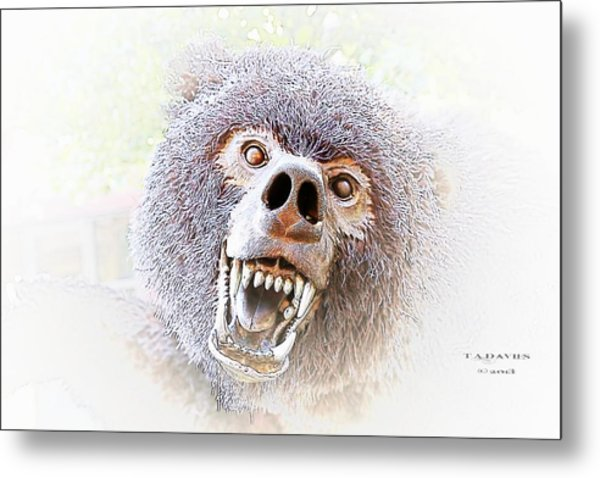 Grizzly Dream Metal Print