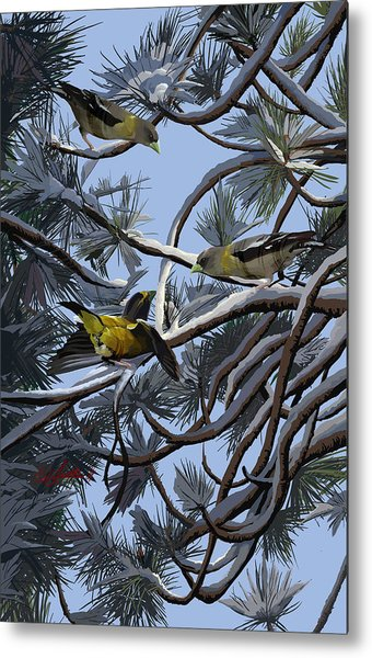 Grosbeaks On Tree Limbs Metal Print