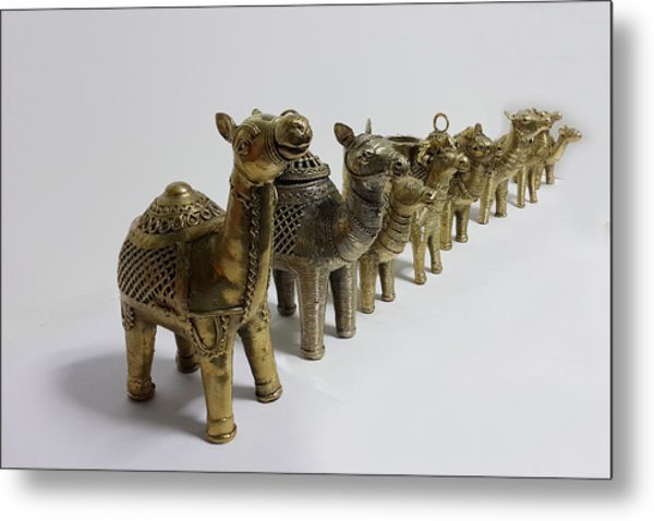Group Of Camels Metal Print