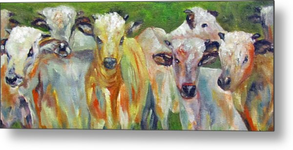 The Gathering, Cattle   Metal Print