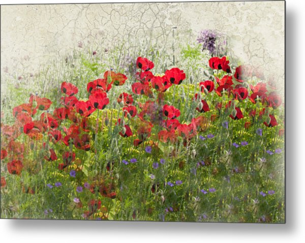 Grunge Poppy Field Metal Print by Lesley Rigg