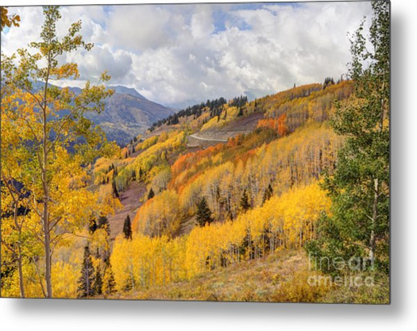 Guardsman Pass Aspen - Big Cottonwood Canyon - Utah Metal Print