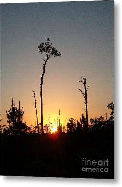 Gulf Shores Sunset Metal Print