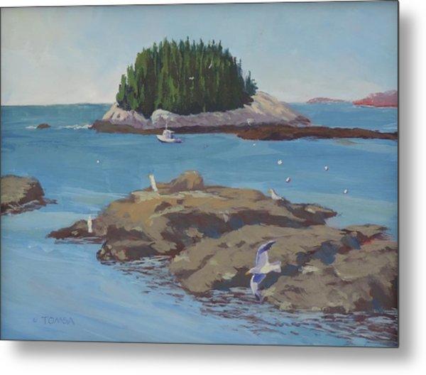 Gulls At Five Islands - Art By Bill Tomsa Metal Print