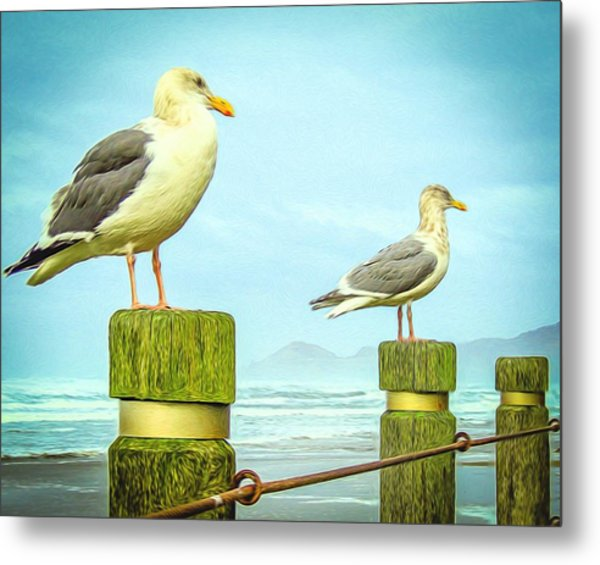 Gulls Metal Print by Denise Darby