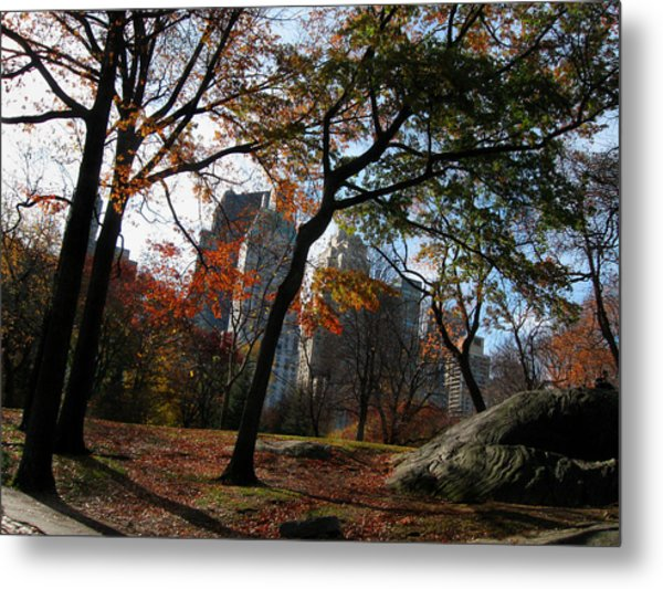 Guy On A Rock In Central Park Metal Print